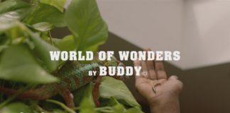 """Buddy & Kaytranada pubblicano il video di """"World Of Wonders"""""""