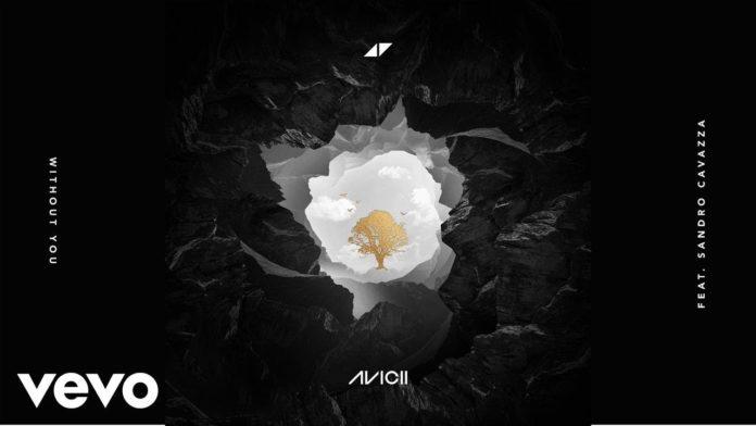 Avicii - Without You (Traduzione e Testo) feat. Sandro Cavazza