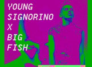 Tutti contro Big Fish - La mossa Young Signorino