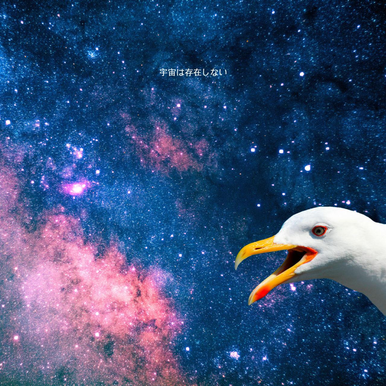 L'Universo Non Esiste Album